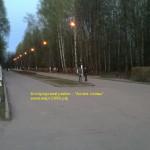 Солдаты Богородского района